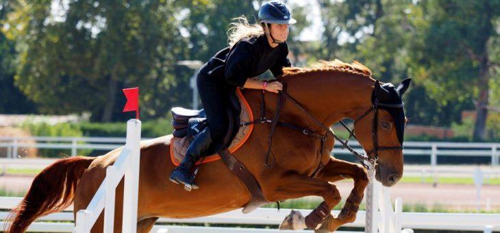 Combien coute l'equitation ?