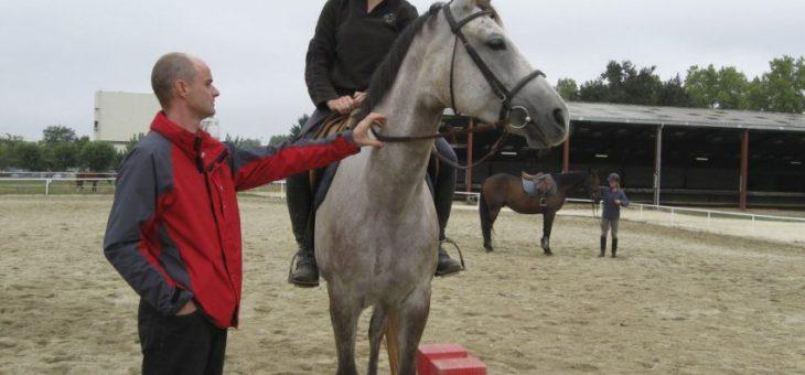 Comment devenir moniteur d'équitation ?